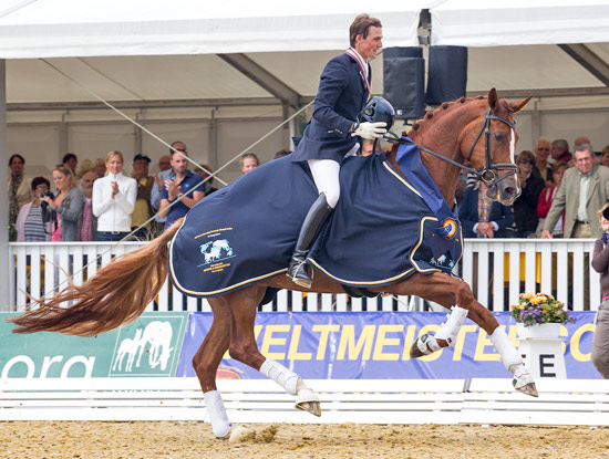 Dressage World Breeding Championship 2020 Postponed until December
